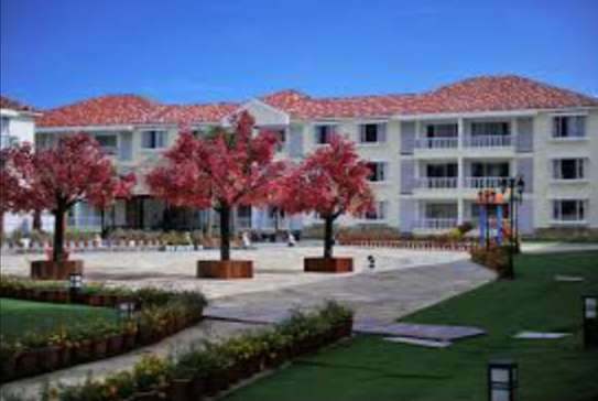3 Bdrm Apartment at Oysterbay image 4
