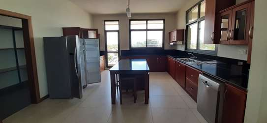 3 Bedroom Beautiful Apartment For  Rent in Msasani image 14