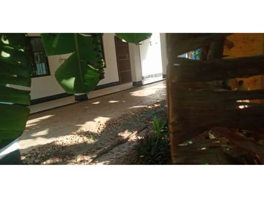 4bed house at oyster bay$1500 image 6