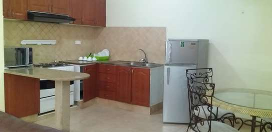 2 Bdrm Fully Furnished Apartment  at Masaki $650 image 10