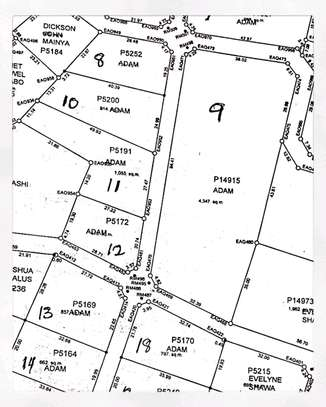 4300 SQM. Of a Residential cum Commercial Plot at Madale image 1