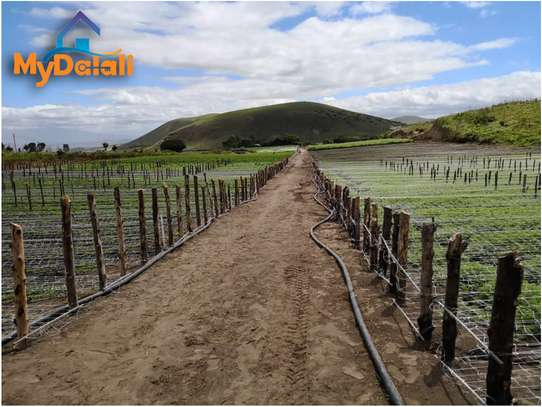 445 Acres ( 180 Hectares) Flower Farm in Arusha image 4