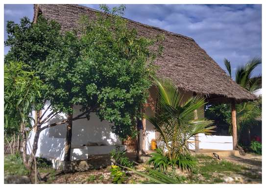 Cozy Property in Jambiani image 10