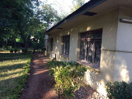 4 bed room house for rent at oyster bay $1500pm image 7