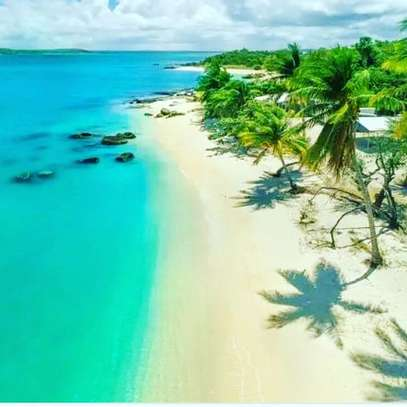 DO YOU WANT TO QUICKLY SELL YOUR KIGAMBONI BEACH PLOT image 1