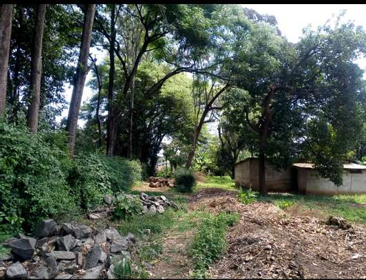 1 ACRE OF LAND FOR SALE AT SAKINA image 7