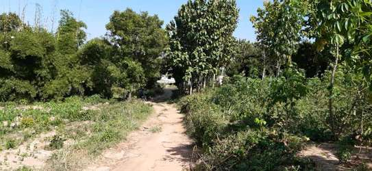 2436 Plot with clean Title Deed at PUGU hill area image 1
