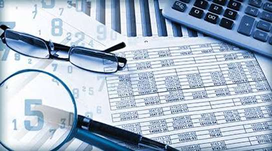 Accountant and auditors