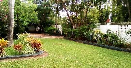 House for sale t sh mLN 950 image 5