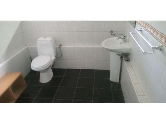 3bed house mature garden at oyster bay $1200pm image 11