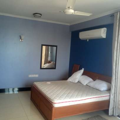 1 Bedroom Fully Furnished Apartments image 12