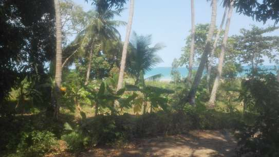 TOWN OCEANFRONT LAND FOR SALE IN ZANZIBAR ISLAND