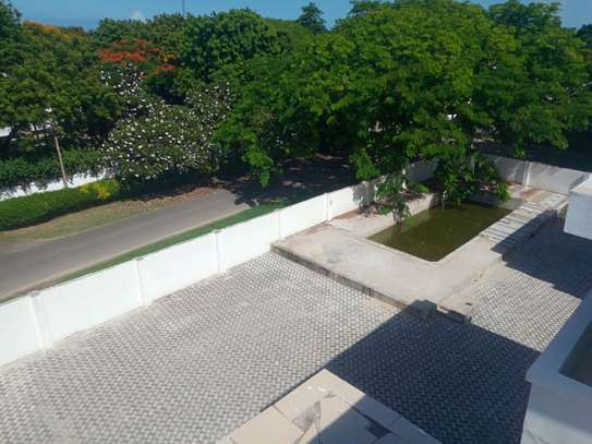 3bed apartment at oyster bay $800pm image 9