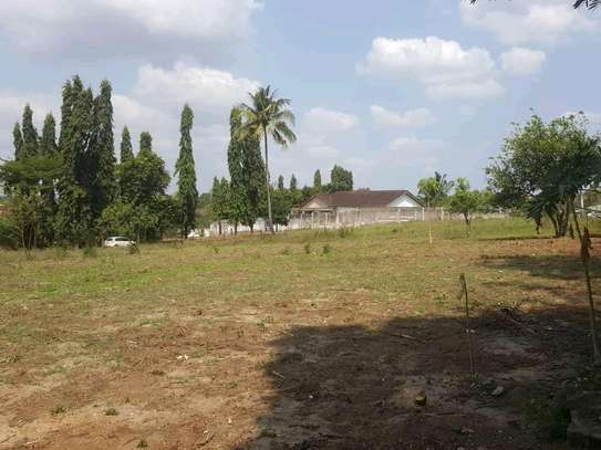 House in 3 Acres Land For Sale image 6