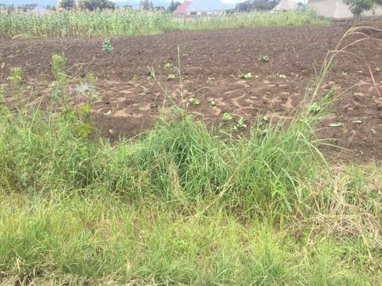 Kiwanja kinauzwa Pipeline(pambogo),Mbeya/Plots for sale at Pipe line,Mbeya
