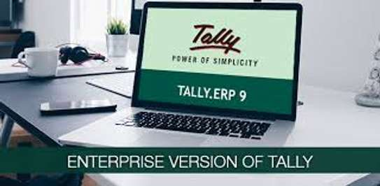 Accounting packages - Tally & Queckbook