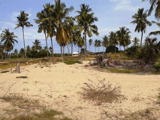 Beautiful Beach Campsite For Sale at Bagamoyo image 13