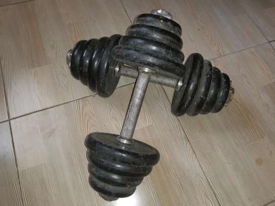 A pair of dumbells for sale