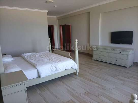 1,2 and 3bhk luxurious apart fully furnished for rent image 9