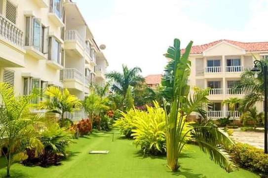 Lovely 2 & 3 Bdrm Full Furnished Apartments in Oysterbay