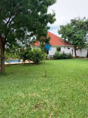 4 bed room house for rent $5000pm at masaki image 9