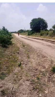 2 Acres land Facing the Proposed Tarmac road (soon to be built) at Buyuni Kigamboni. image 2