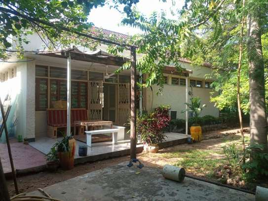3bed room house at masaki $800 image 3