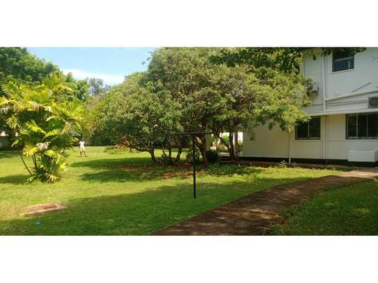 4bed house at masaki with mature garden,pool,generator $5000pm image 13