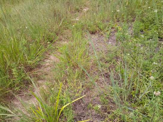 plot for sale goba near msakuzi road. image 4