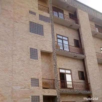 2 bdrm New Classy Unfurnished Apartments to Let at Sinza image 8