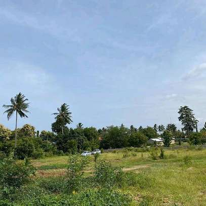 Plot for sale location sala sala image 2