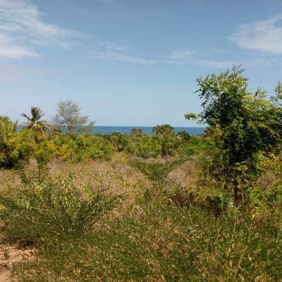 Beach plot for sale-Cheka Kigamboni image 5