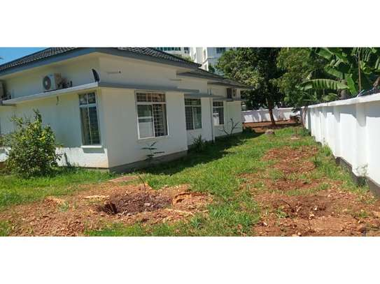 4 bed big house for rent at masaki $1500 image 7