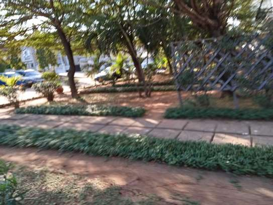 3bed furnished  apartment at mikocheni $600pm image 13