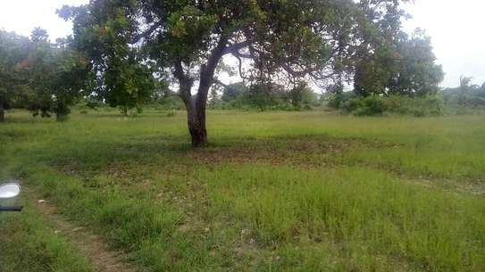 Land for sale very cheap-Kiromo shule junction of bagamoyo image 1