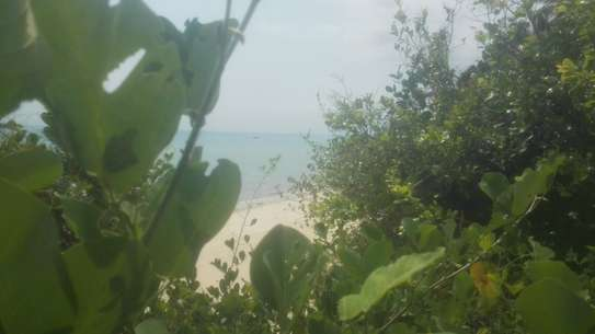 TOWN OCEANFRONT LAND FOR SALE IN ZANZIBAR ISLAND image 2