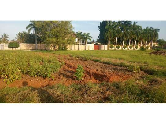 plot800sqm for saleat mbezi beach tsh300m image 11