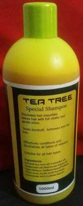 Tea Tree Shampoo and Hair Oil