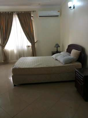 3 Bedroom Fully Furnished Apartment  for Rent image 8