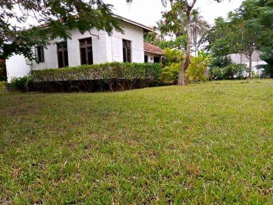 3 big house stand alone for rent at oyster bay image 1