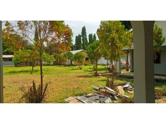 4bed house i deal for office along haileselasie rd masaki $2500pm image 7