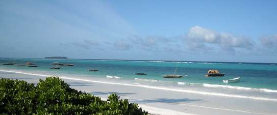 2850 Sqm Land Ocenfront at Matewe Village in Zanzibar Island image 1