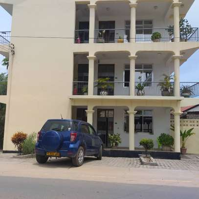 2BED HOUSE APARTMENT AT MIKOCHENI CHAMA $500PM image 1