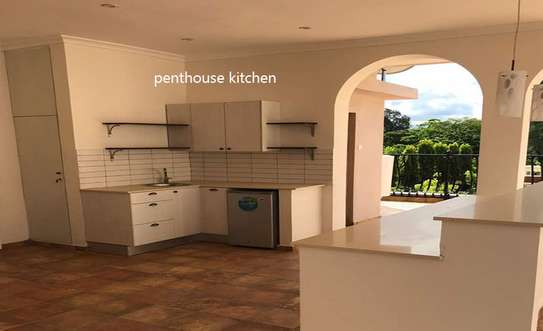 Adorable Furnished 4 Bdrm House in Masaki image 8