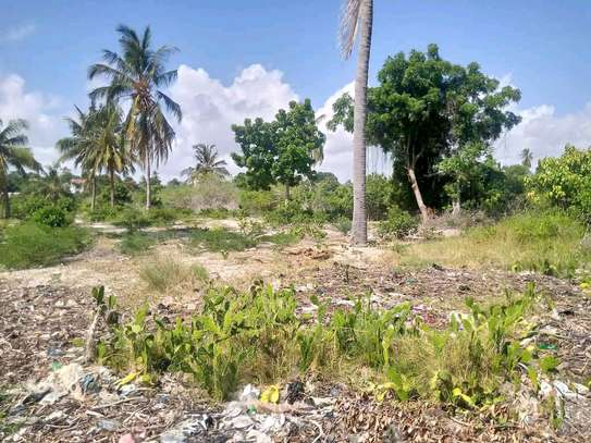 Plot for sale at Bagamoyo snake park image 2