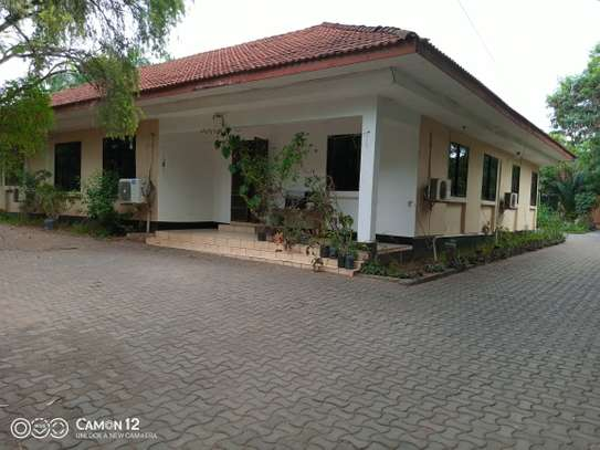7 Bdrm House in masaki ideal for office