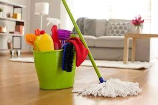 Office & home cleaning services