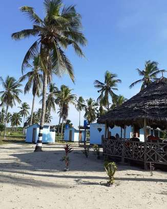 9 ACRES BEACH PLOT  AT BAGAMOYO image 7