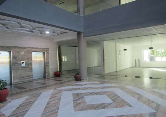 44 - 240 Sqm New & Modern Office / Commercial Space in Oysterbay image 4