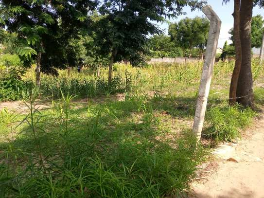 plot for sale at goba contena image 11